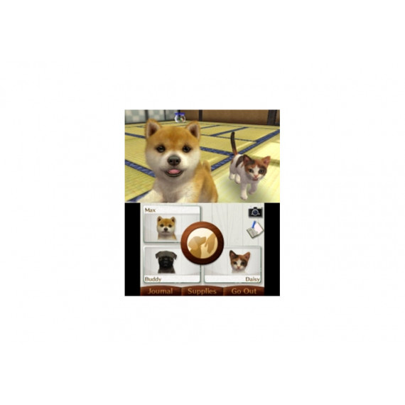 NINTENDO NINTENDOGS CATS CANICHE 3DS