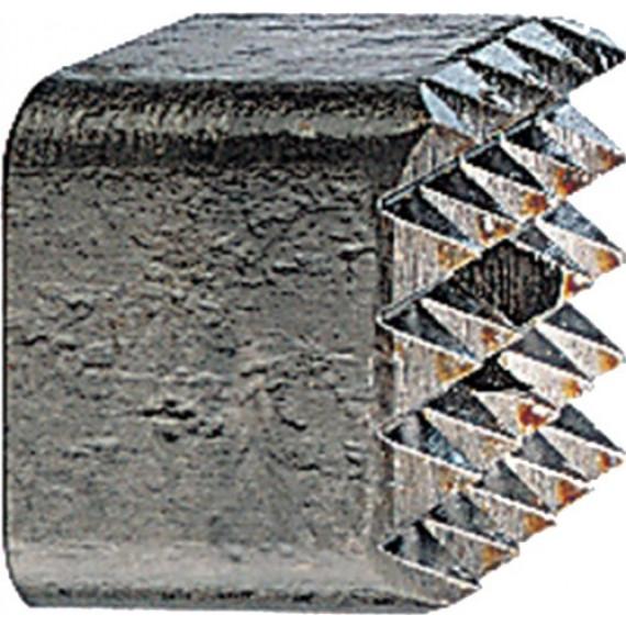 Bosch Professional Boucharde pour Porte-Outils, 5 x 5 Dents, 60mm x 60mm