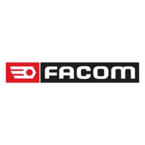 FACOM R.161C Entretien des Cliquets chapeau, Argent