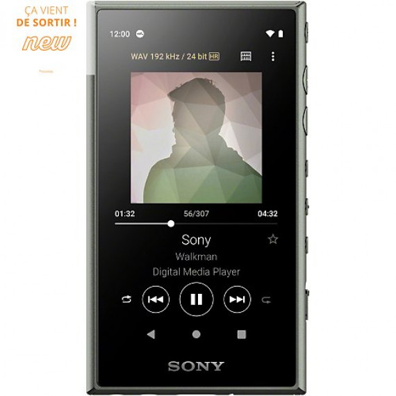 SONY NW-A105 Gris