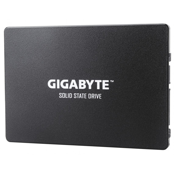 Gigabyte GP-GSTFS31120GNTD 120G