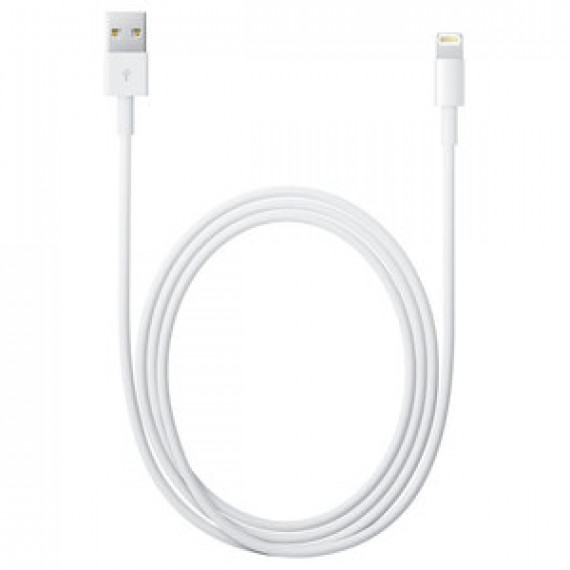 APPLE Câble Lightning vers USB - 1 m