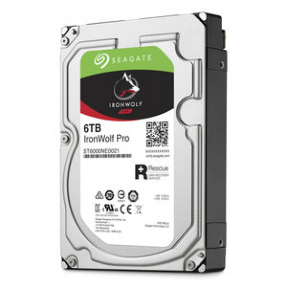 Seagate IronWolf Pro 6 To (ST6000NE0021)